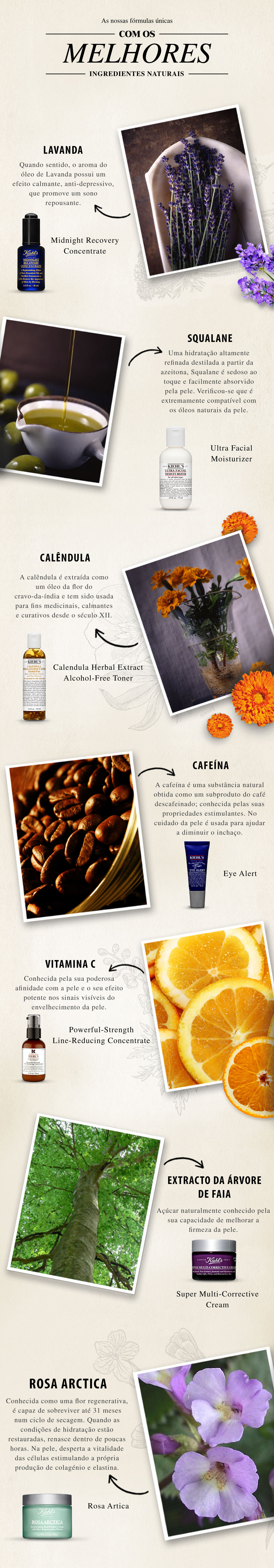Ingredientes naturais da marca Kiehl's